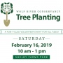 14th Annual Tree Planting: Event-Day Lead Volunteer