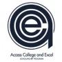 ACE Scholars Program