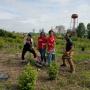 Park Clean Up and Invasive Species Destruction