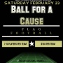 Ball for a Cause