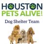 Dog Adoption Center Volunteers