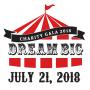 Dream Big Charity Gala
