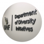 Department of Diversity Initiatives