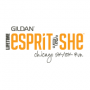 2016 Gildan Esprit de She Chicago 5k/10k Run