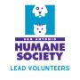 Lead Volunteers