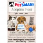 Petsmart Adoption Center Volunteer