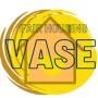 VASE events (winter 2021)