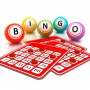 BINGO! In Assisted Living | January 2020