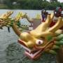 Austin Dragon Boat Festival 2014