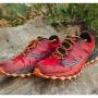 Frozen Toes 15k Trail Race